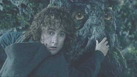 Lord of the Rings: The Two Towers: Pippin Took