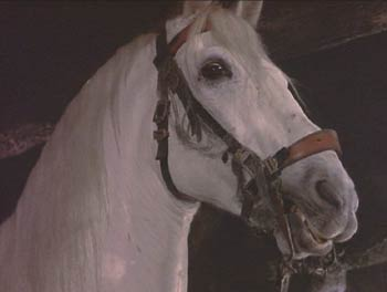 The Adventures of Baron Munchausen: The Baron's fierce and loyal white horse, Bucephalus.