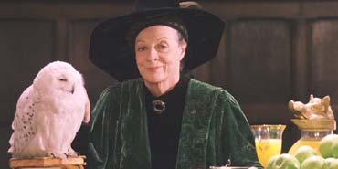 Harry Potter and the Sorcerer's Stone: Professor McGonagall has just sent Harry a Nimbus 2000.