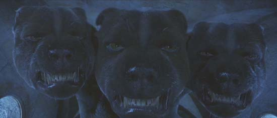 Harry Potter and the Sorcerer's Stone: Fluffy, everyone's favorite three-headed dog.