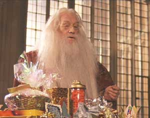 Harry Potter and the Sorcerer's Stone: Dumbledore visits Harry in the infirmary.