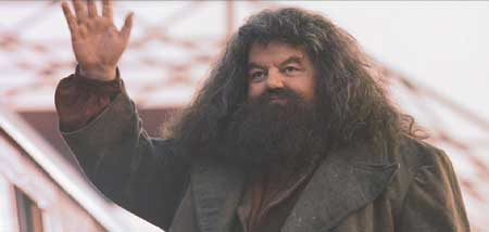 Harry Potter and the Sorcerer's Stone: Rubeus Hagrid, a guy who feels the way I do about pets.