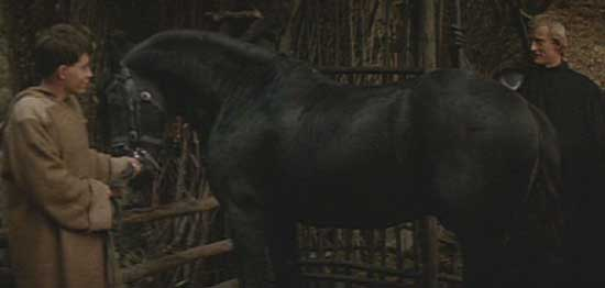 "Ladyhawke: The Friesian stallion Goliath, implausibly mistaken for a ""little lady"" by Matthew Broderick's character."