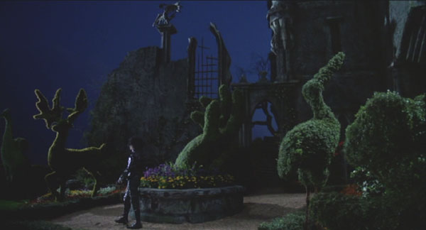 Edward Scissorhands: Beautiful, isn't it?
