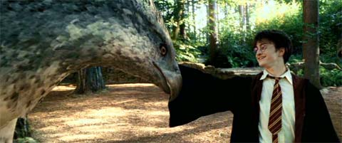 Harry Potter and the Prisoner of Azkaban: Harry touching Buckbeak the hippogriff for the first time.