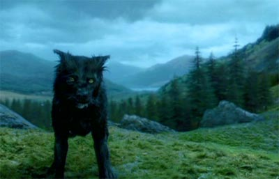 Harry Potter and the Prisoner of Azkaban: Sirius Black as a dog.
