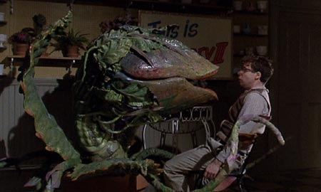 Little Shop of Horrors (1986): Audrey II (voiced by Levi Stubbs) tells it like it is to Seymour.