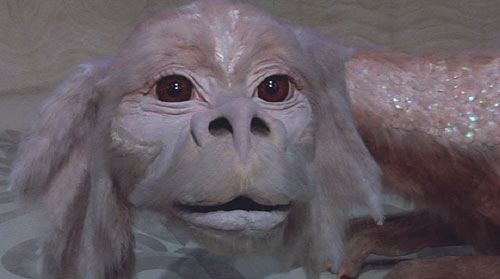 The NeverEnding Story: Falkor the Luck Dragon